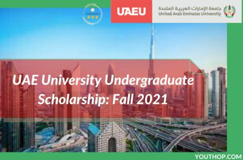 UAE University Undergraduate Scholarship: Fall 2021
