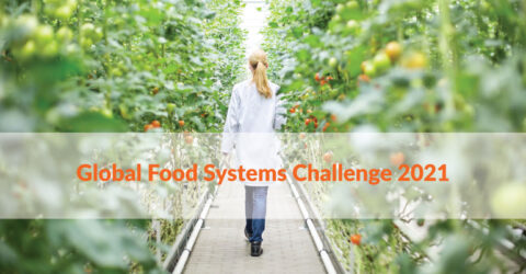 Global Food Systems Challenge 2021