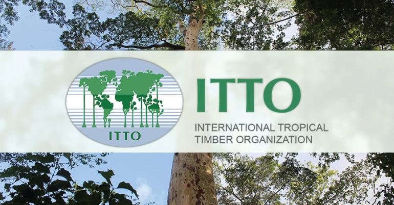ITTO Freezailah Fellowship Fund 2021