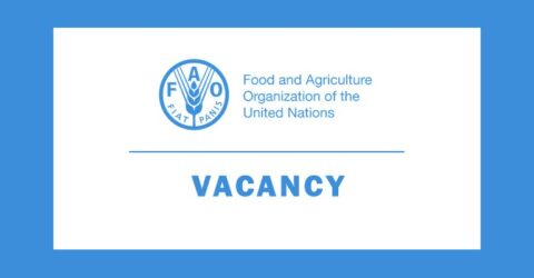 FAO is looking for FAO Regional, Sub-regional, Country, Liaison Offices and headquarters Fellows 2021 in Bangladesh
