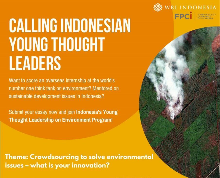 call for essay n young thought leaders on environment  call for essay n young thought leaders on environment 2017