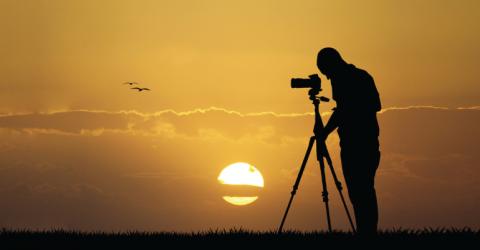 مسابقة تصوير الطيرى البرى الدولية 2019